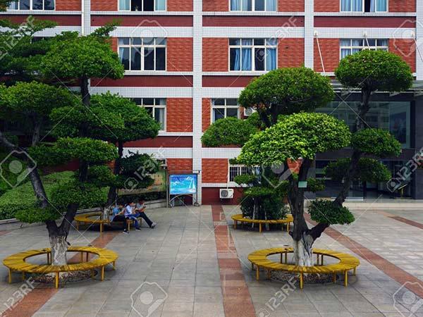 panzhihua-university-600